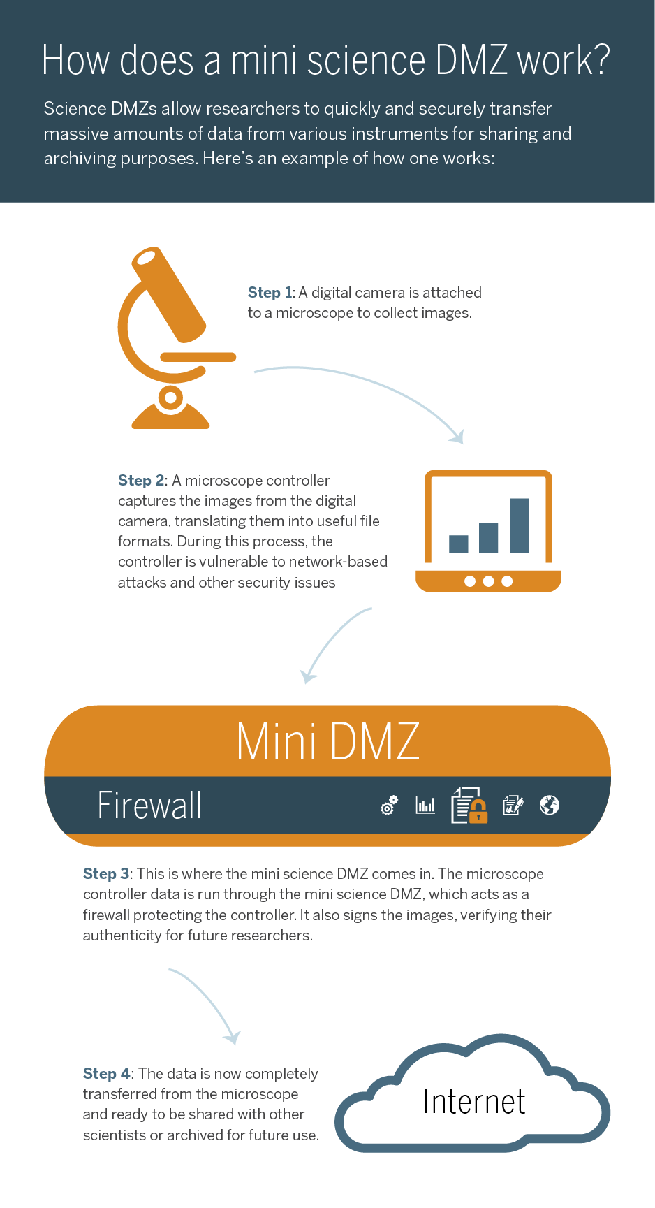 Mini science DMZ infographic